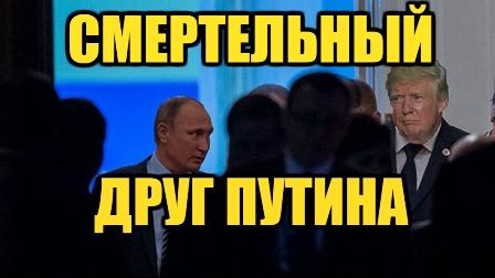 Трамп и Путин не обсуждали темы Крыма и Донбасса, - Песков - Цензор.НЕТ 8512